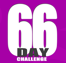 66 day
